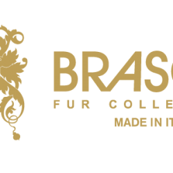 braschifurcollections-logo